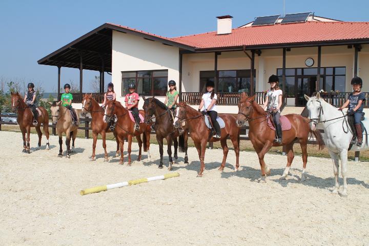 Училище по езда