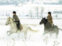 Зимна езда