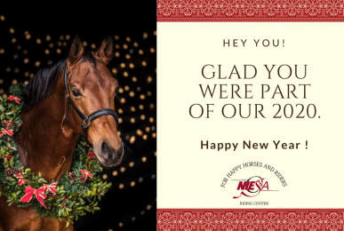 Niesa Email Happy New Year Card 2021